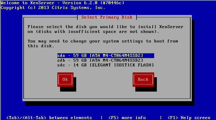 xenServerInstall-004-choose-disk